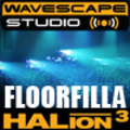 DJ samples - Floorfilla - Steinberg HALion 3  format